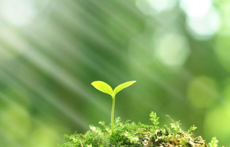 Komunitární program LIFE – Výzva na podporu integrovaných projektů
